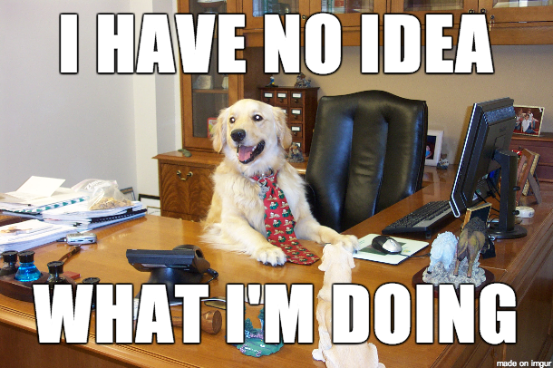 "Dog at desk with caption ""I have no idea what I'm doing"""